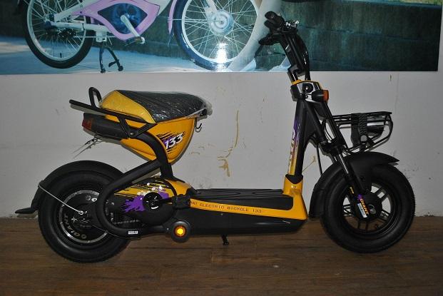 xe đạp điện Giant M133P màu vàng, xe dap dien Giant M133P mau vang